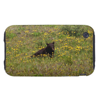 BLST Black Bear Snack Time iPhone 3 Tough Cases