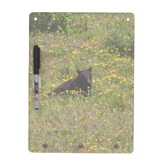 BLST Black Bear Snack Time Dry Erase Board