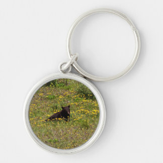 BLST Black Bear Snack Time Silver-Colored Round Keychain
