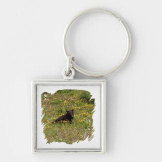 BLST Black Bear Snack Time Silver-Colored Square Keychain