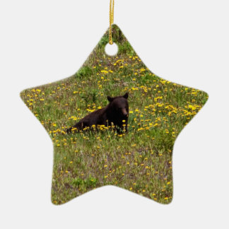 BLST Black Bear Snack Time Double-Sided Star Ceramic Christmas Ornament