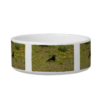 BLST Black Bear Snack Time Cat Water Bowl