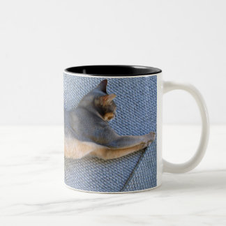 Blue Abyssinian Male Stretched Out Two-Tone Coffee Mug