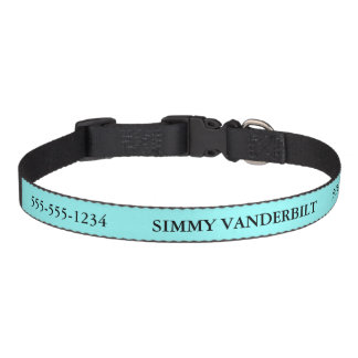 Blue Add Name and Phone Number Lost Dog Pet Collar