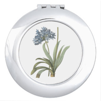 blue African lily(Agapanthus) by Redouté Compact Mirror