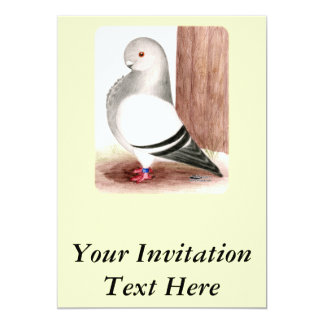 Blue African Owl Pigeon Invitation