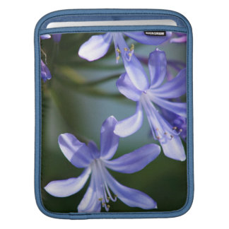 Blue Agapanthus flowers Sleeves For iPads