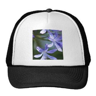 Blue Agapanthus flowers Trucker Hat