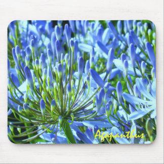 Blue Agapanthus Mousepad