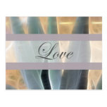 Blue Agave 1 Glow Love Wedding Post Cards