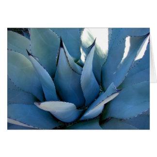 Blue Agave Card