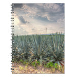 Blue Agave Notebook