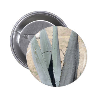 Blue Agave Pinback Button