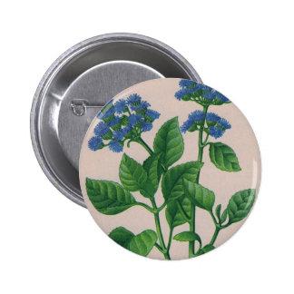 blue ageratum button