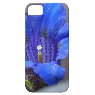 Blue Alpine Enzian Flower iPhone 5 Covers