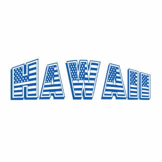 Blue American Flag Hawaii Photo Cut Outs