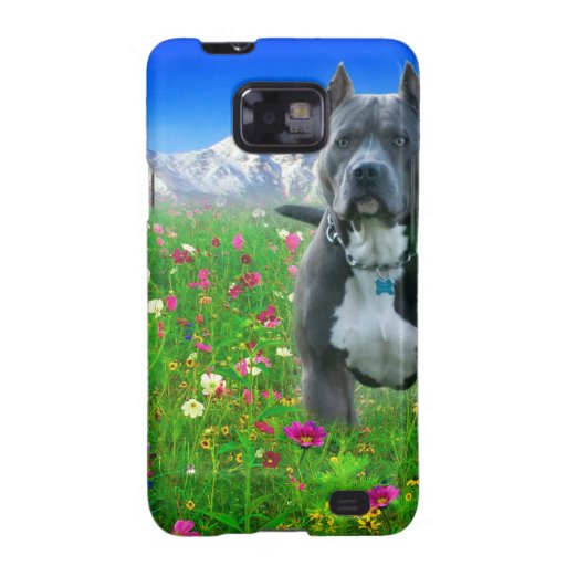 Blue American Pit Bull Terrier, Pikes Peak Samsung Galaxy S2 Cases