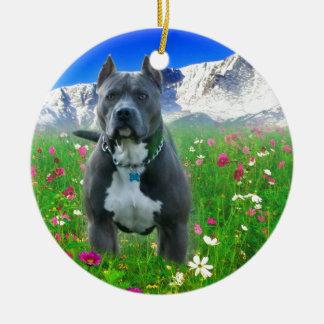 Blue American Pit Bull Terrier, Pikes Peak Ceramic Ornament