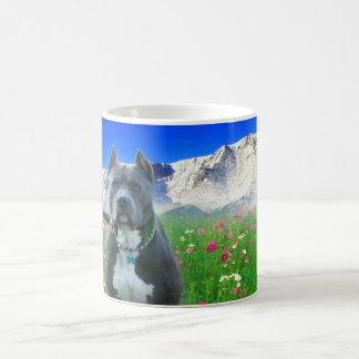 Blue American Pit Bull Terrier, Pikes Peak Coffee Mug