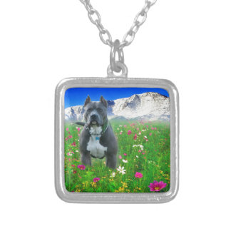Blue American Pit Bull Terrier, Pikes Peak Pendants