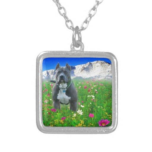 Blue American Pit Bull Terrier, Pikes Peak Square Pendant Necklace