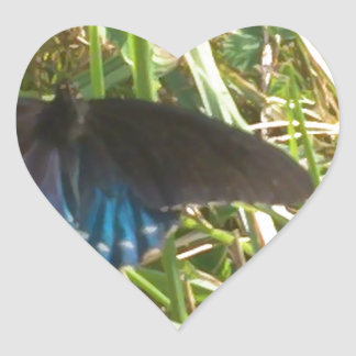 blue and black butterfly heart sticker