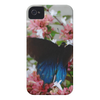 Blue and Black Butterfly on pink flowers iPhone 4 Case-Mate Case