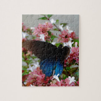 Blue and Black Butterfly on pink flowers Jigsaw Puzzle