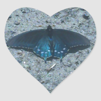 blue and black butterfly on sandy beach heart sticker