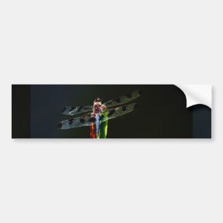 Blue and black  Dragonfly on green and red grass Bumper Stickers
