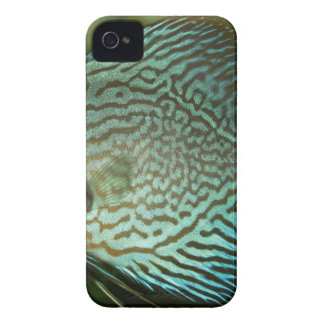 Blue and Black Fish iPhone 4 Case-Mate Case