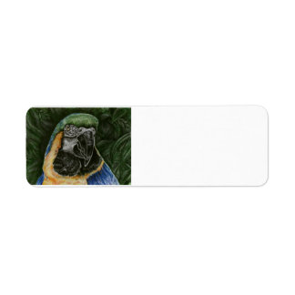Blue and Gold Macaw Address Lables Return Address Label