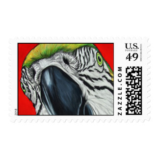 Blue and Gold Macaw Art Stamp
