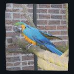 """Blue And Gold Macaw Bandana<br><div class=""""desc"""">Blue and gold macaw decorates this pretty 19.5 X 19.5 bandana</div>"""