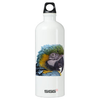 Blue and Gold Macaw Head Shot Parrot SIGG Traveler 1.0L Water Bottle