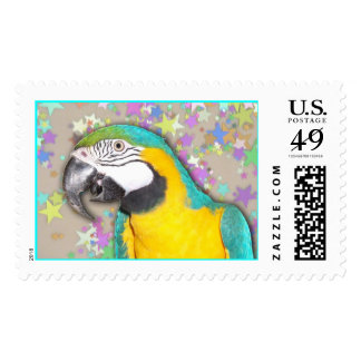 Blue and Gold Macaw (Large) Stamp