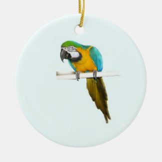 Blue and gold macaw christmas tree ornament