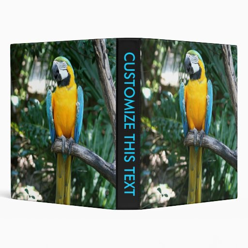 Blue and Gold macaw parrot against green trees Binder