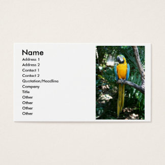 Blue and Gold macaw parrot against green trees Business Card