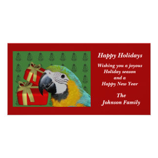 Blue And Gold Macaw Parrot Christmas Holiday Card