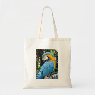 Blue and Gold Macaw Preening Tote Bag