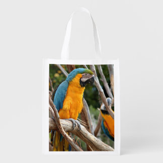 Blue And Gold Macaw Reusable Grocery Bag