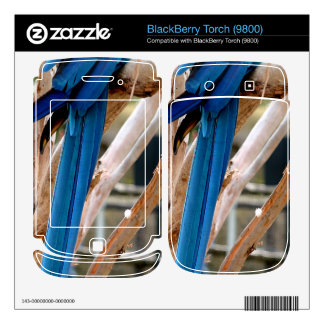 Blue And Gold Macaw Skins For BlackBerry