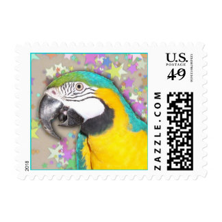 Blue and Gold Macaw (Small) Postage Stamp