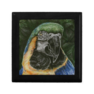 Blue and Gold Macaw small tile Gift box