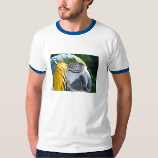 Blue and Gold Macaw T Shirt
