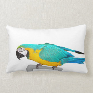 Blue and gold macaw throw pillow for Blue and gold pillows