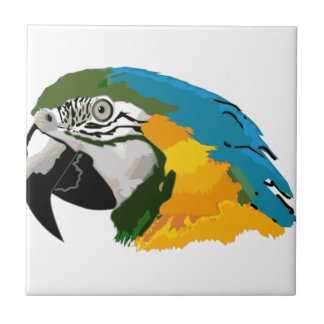 Blue And Gold Macaw Tile