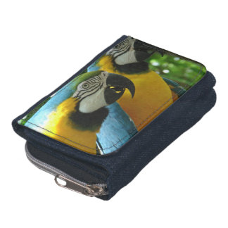 Blue and Gold Macaw Wallets