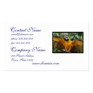 Blue and Gold Macaw with Wings Spread Double-Sided Standard Business Cards (Pack Of 100)